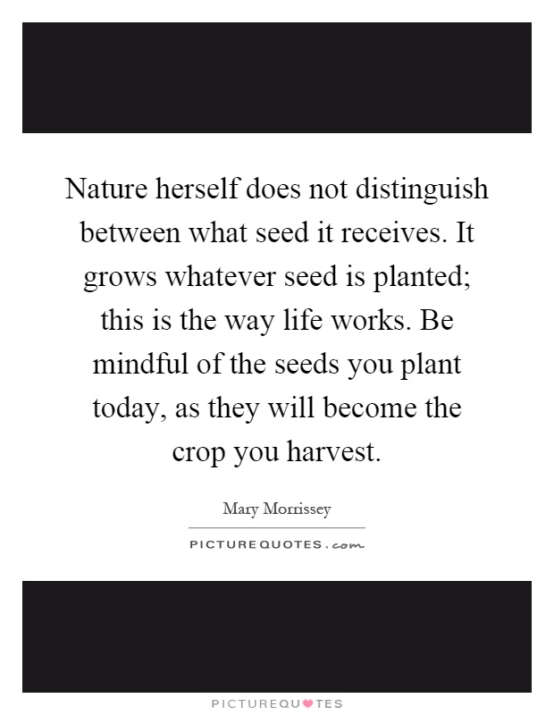 Nature herself does not distinguish between what seed it receives. It grows whatever seed is planted; this is the way life works. Be mindful of the seeds you plant today, as they will become the crop you harvest Picture Quote #1