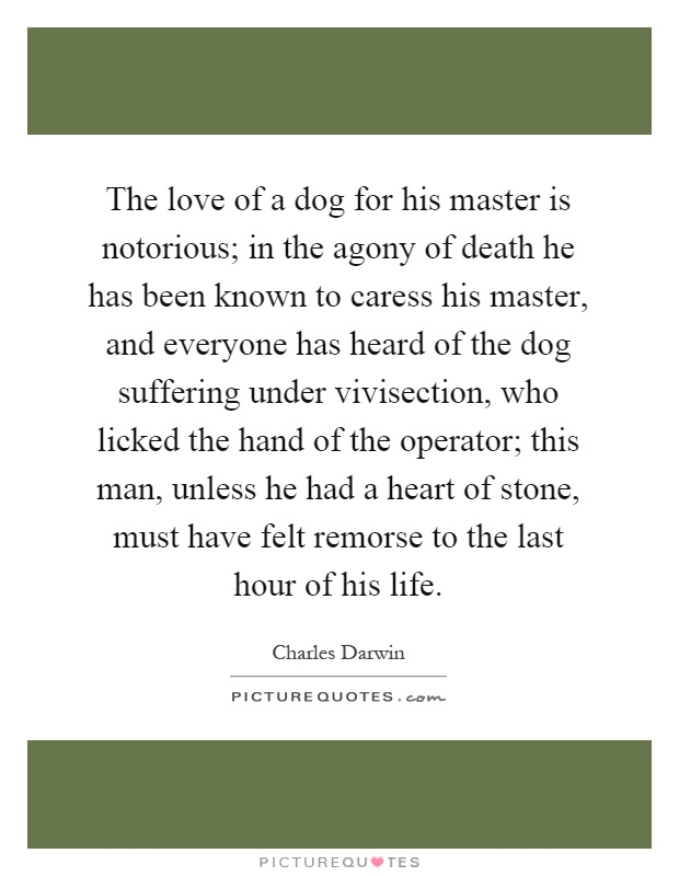 The love of a dog for his master is notorious; in the agony of death he has been known to caress his master, and everyone has heard of the dog suffering under vivisection, who licked the hand of the operator; this man, unless he had a heart of stone, must have felt remorse to the last hour of his life Picture Quote #1