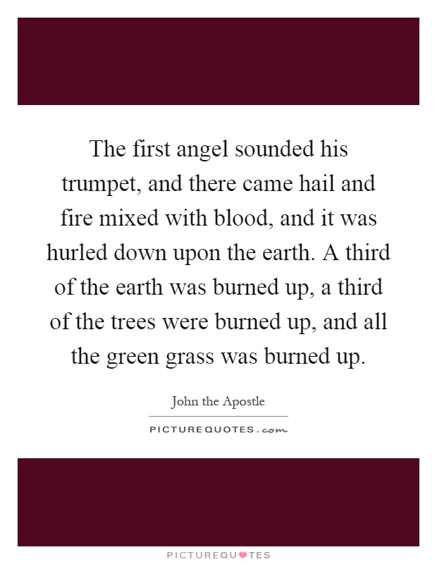 The first angel sounded his trumpet, and there came hail and fire mixed with blood, and it was hurled down upon the earth. A third of the earth was burned up, a third of the trees were burned up, and all the green grass was burned up Picture Quote #1