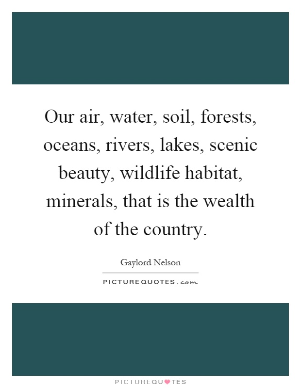 Our air, water, soil, forests, oceans, rivers, lakes, scenic beauty, wildlife habitat, minerals, that is the wealth of the country Picture Quote #1