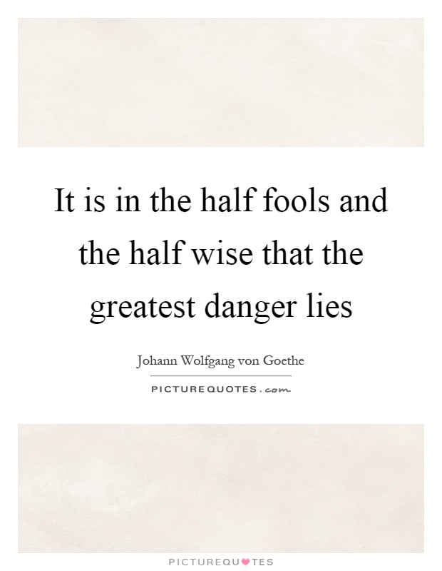 It is in the half fools and the half wise that the greatest danger lies Picture Quote #1