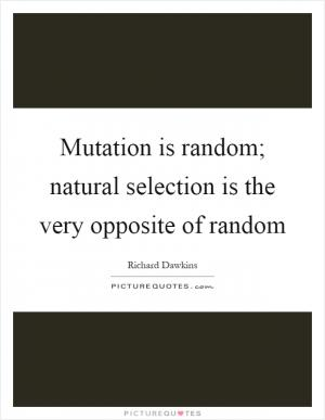 laws of natural selection