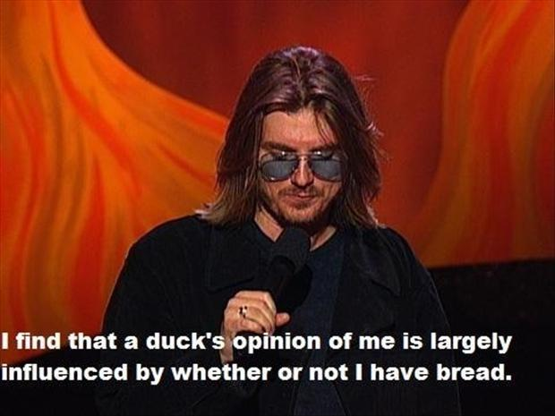 I find that a duck's opinion of me is largely influence by whether or not I have bread Picture Quote #1