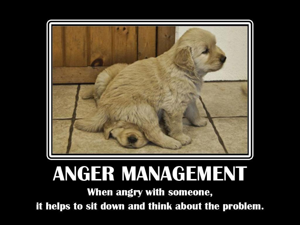 Anger management. When angry with someone, it helps to sit down and think about he problem Picture Quote #1