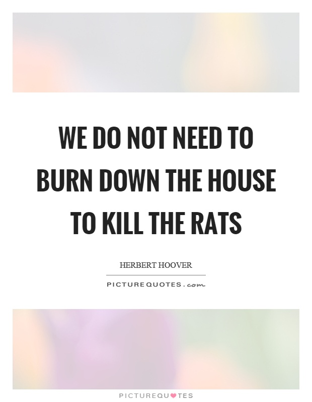 how to kill rats not possums