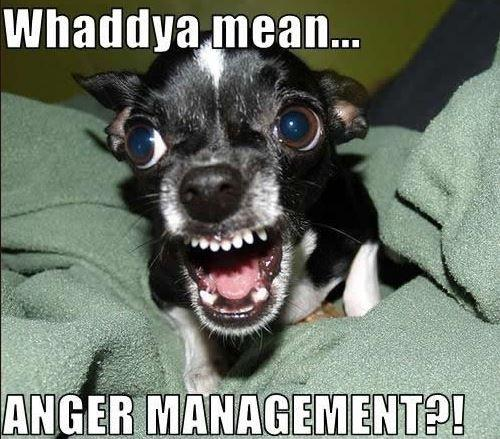 Whaddya mean... Anger management?! Picture Quote #1