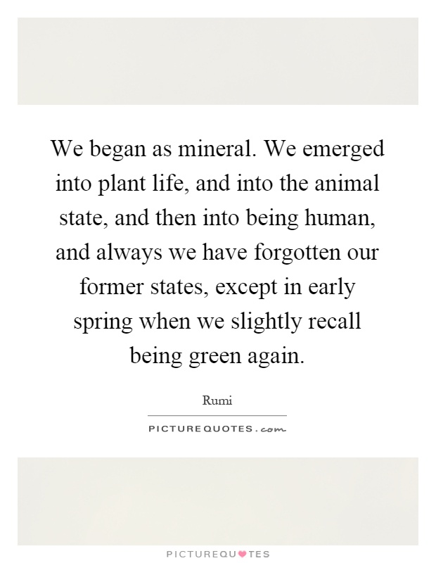 We began as mineral. We emerged into plant life, and into the animal state, and then into being human, and always we have forgotten our former states, except in early spring when we slightly recall being green again Picture Quote #1