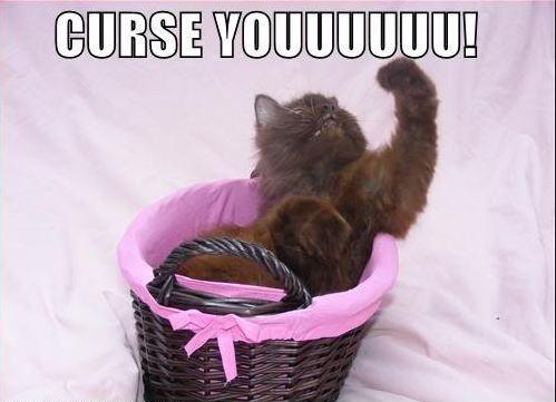 Curse youuuuuu! Picture Quote #1