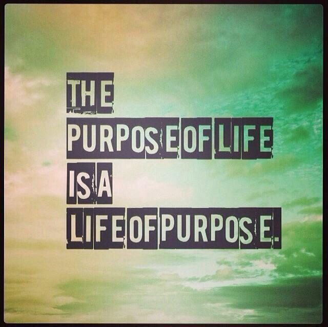 The purpose of life, is a life of purpose Picture Quote #1