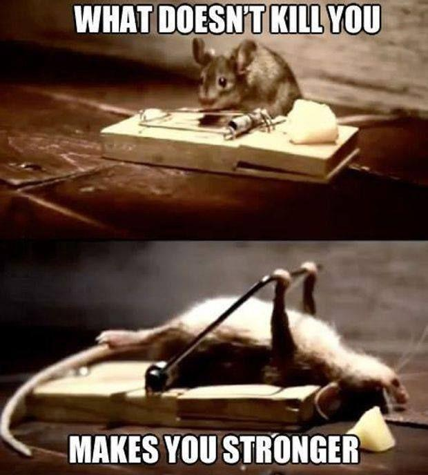 What doesn't kill you makes you stronger Picture Quote #1