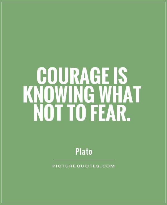 Courage is knowing what not to fear. Picture Quote #1