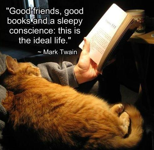 Good friends, good books and a sleepy conscience: this is the ideal life Picture Quote #2