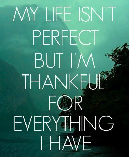 My life isn't perfect but i'm thankful for what i have Picture Quote #1