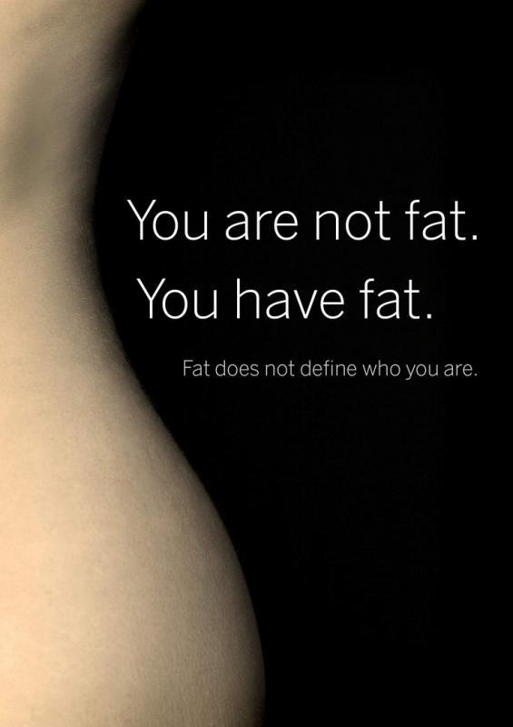 You are not fat. You have fat. Fat does not define who you are Picture Quote #1