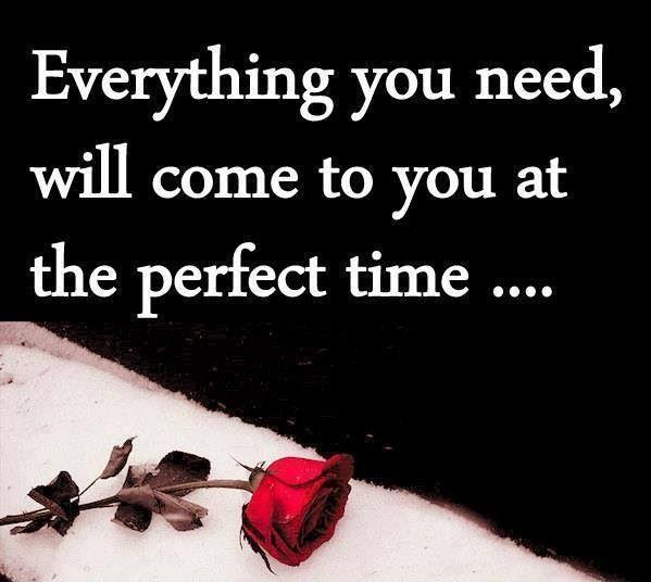Everything you need will come to you at the perfect time Picture Quote #1