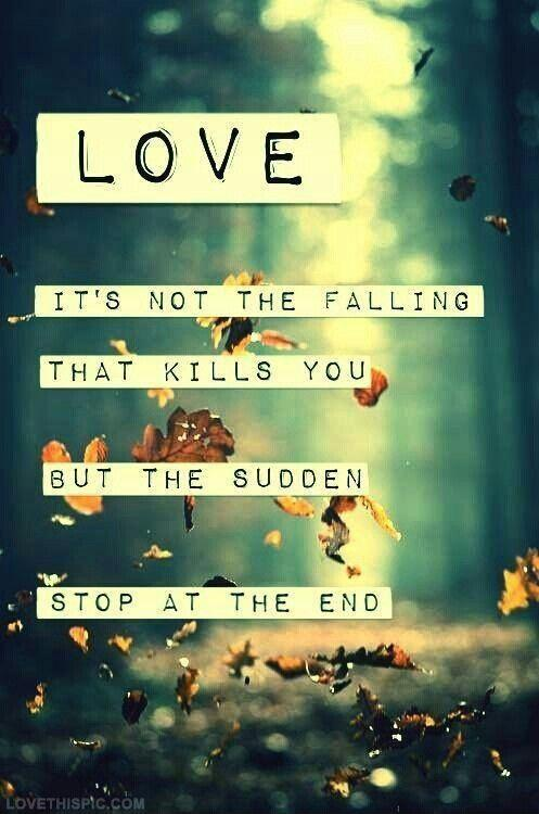 Love. It's not the falling that kills you, but the sudden stop at the end Picture Quote #1