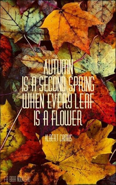 Autumn is a second spring when every leaf is a flower Picture Quote #2