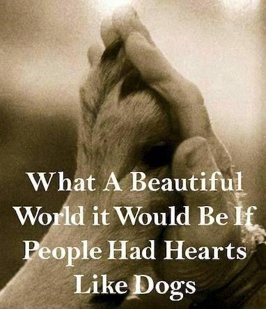 What a beautiful world it would be if people had hearts like dogs. Picture Quote #1