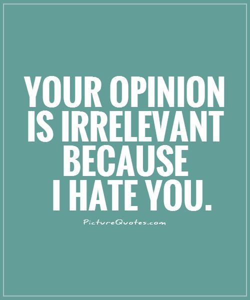Your opinion is irrelevant because I hate you Picture Quote #1