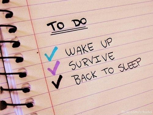 To do. Wake up. Survive. Go back to sleep Picture Quote #1
