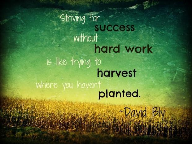 Striving for success without hard work is like trying to harvest where you haven't planted Picture Quote #1