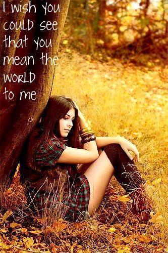 I wish you could see that you mean the world to me Picture Quote #1