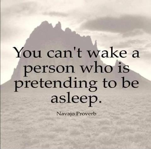 You can't wake a person who is pretending to be asleep Picture Quote #1