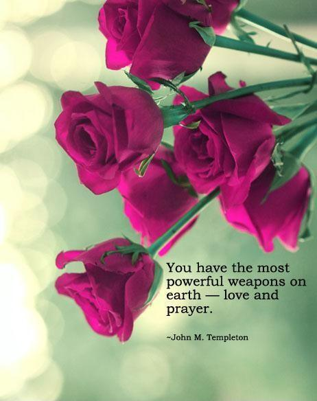 You have the most powerful weapons on Earth, love and prayer Picture Quote #1