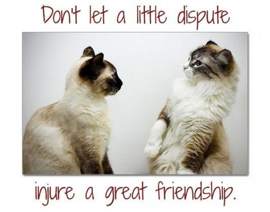 Don't let a little dispute injure a great friendship Picture Quote #1
