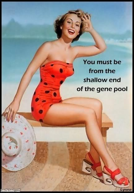 You must be from the shallow end of the gene pool Picture Quote #1