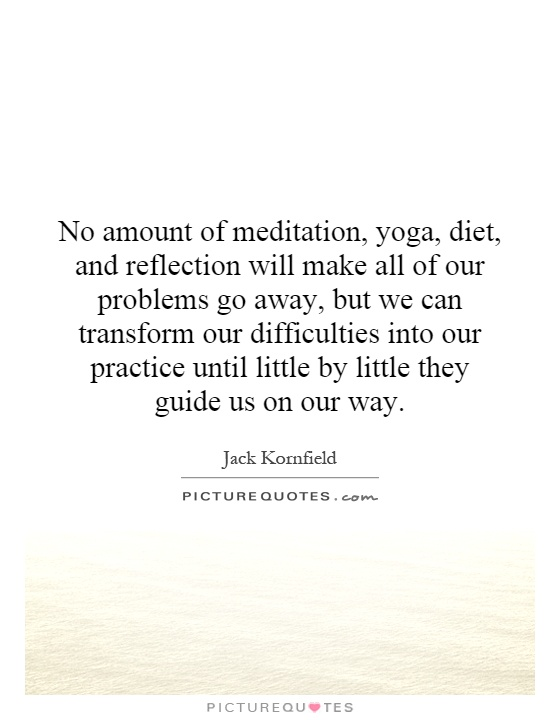 No amount of meditation, yoga, diet, and reflection will make all of our problems go away, but we can transform our difficulties into our practice until little by little they guide us on our way Picture Quote #1