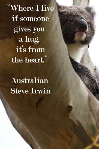 Steve Irwin Quotes Sayings 60 Quotations