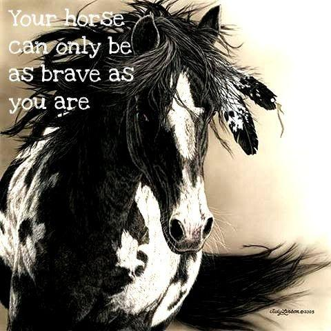 Your horse can only be as brave as you are Picture Quote #1