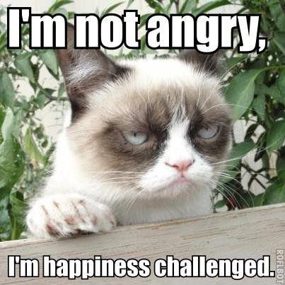I'm not angry, I'm happiness challenged Picture Quote #1