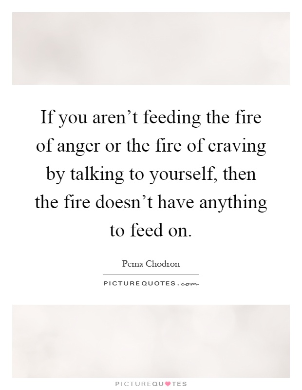 If you aren't feeding the fire of anger or the fire of craving by talking to yourself, then the fire doesn't have anything to feed on Picture Quote #1