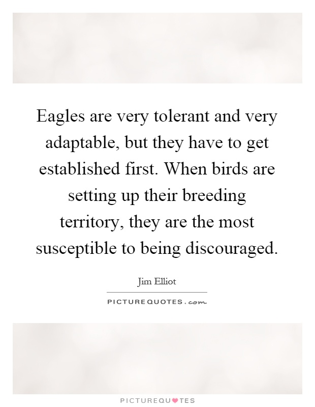 Eagles are very tolerant and very adaptable, but they have to get established first. When birds are setting up their breeding territory, they are the most susceptible to being discouraged Picture Quote #1