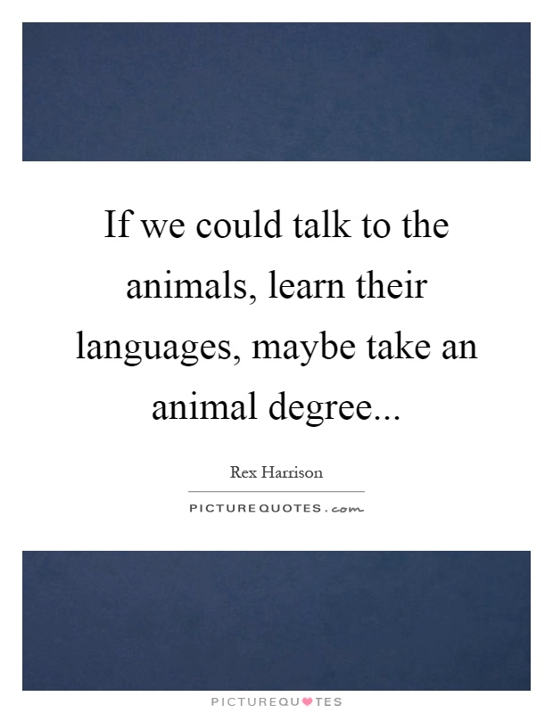 If we could talk to the animals, learn their languages, maybe take an animal degree Picture Quote #1