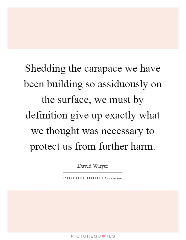 Shedding the carapace we have been building so assiduously on the surface, we must by definition give up exactly what we thought was necessary to protect us from further harm Picture Quote #1