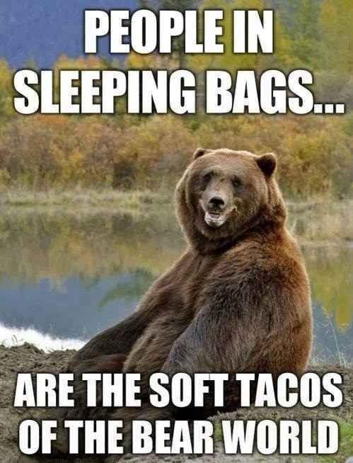 People in sleeping bags are the soft tacos of the bear world Picture Quote #1