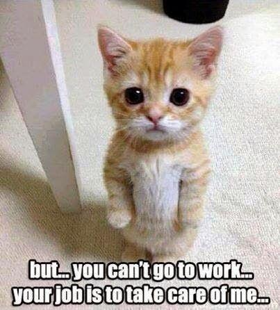 But... you can't go to work... your job is to take care of me Picture Quote #1