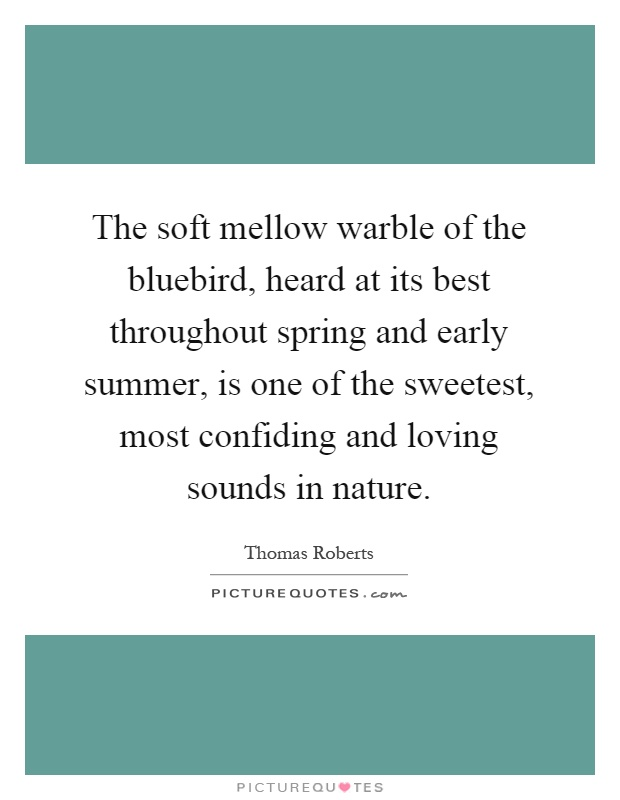 The soft mellow warble of the bluebird, heard at its best throughout spring and early summer, is one of the sweetest, most confiding and loving sounds in nature Picture Quote #1