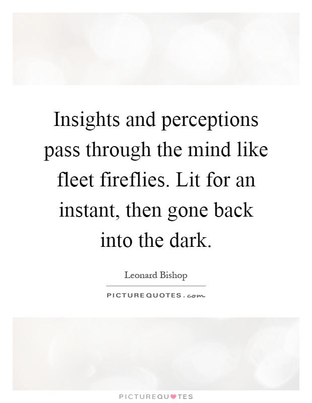 Insights and perceptions pass through the mind like fleet fireflies. Lit for an instant, then gone back into the dark Picture Quote #1