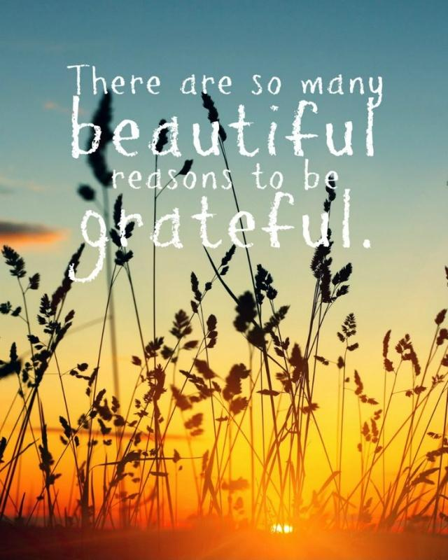There are so many beautiful reasons to be grateful Picture Quote #1