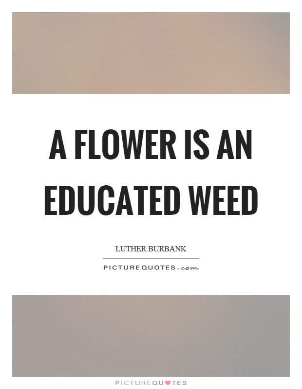 A flower is an educated weed Picture Quote #1