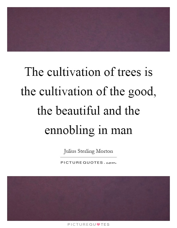 The cultivation of trees is the cultivation of the good, the beautiful and the ennobling in man Picture Quote #1