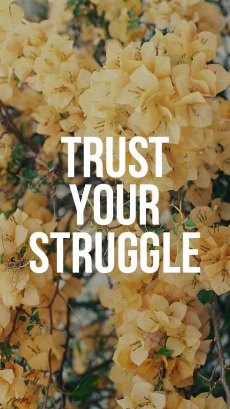 Trust your struggle Picture Quote #1