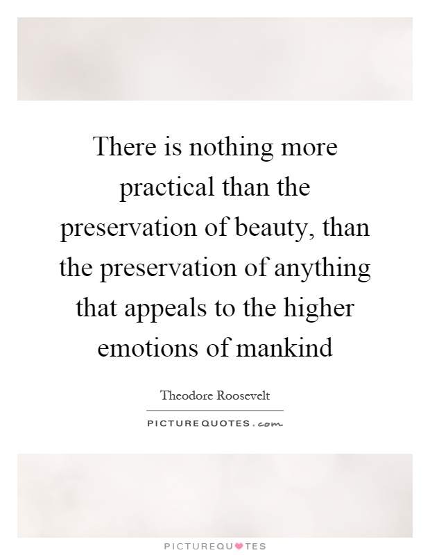 There is nothing more practical than the preservation of beauty, than the preservation of anything that appeals to the higher emotions of mankind Picture Quote #1