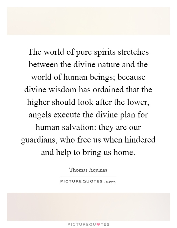 The world of pure spirits stretches between the divine nature and the world of human beings; because divine wisdom has ordained that the higher should look after the lower, angels execute the divine plan for human salvation: they are our guardians, who free us when hindered and help to bring us home Picture Quote #1