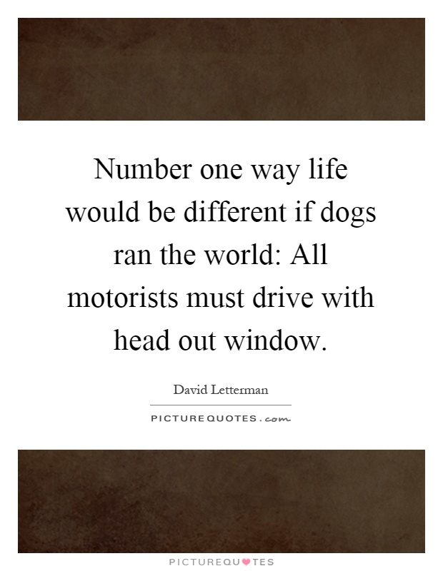 Number one way life would be different if dogs ran the world: All motorists must drive with head out window Picture Quote #1