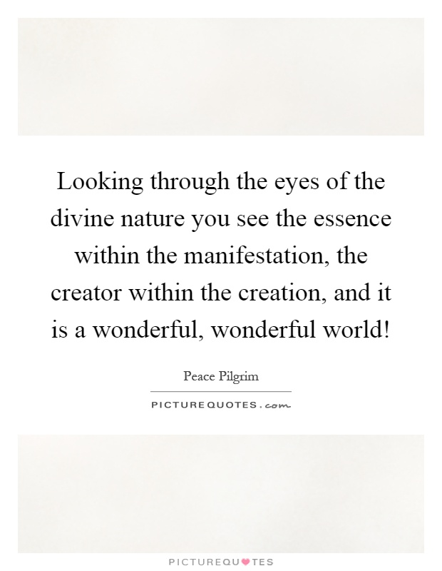 Looking through the eyes of the divine nature you see the essence within the manifestation, the creator within the creation, and it is a wonderful, wonderful world! Picture Quote #1